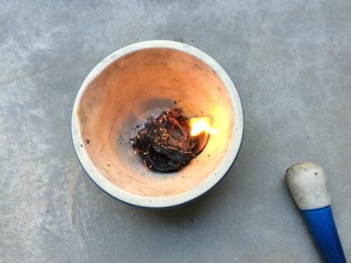 image_23_Strange_Flowers_Burning_web